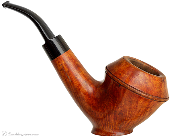 English Estate GBD Pedigree Unique Smooth Rhodesian Sitter